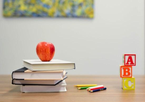 Educação Sexual junto de alunos com Incapacidade Intelectual
